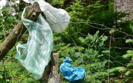 Zadbaj o środowisko naturalne – ekologiczne opakowania
