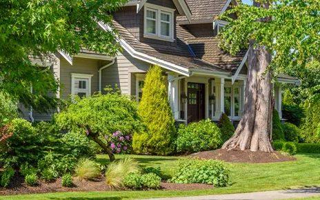 Lipiec w ogrodzie – jakie prace trzeba przeprowadzić?